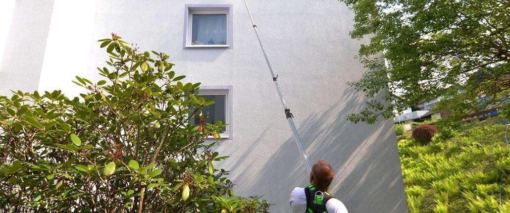 Allessauber Fassadenreinigung Algenentfernung Putzfassade