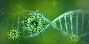 Covid 19 Corona Viren Allessauber Kim Desinfektion