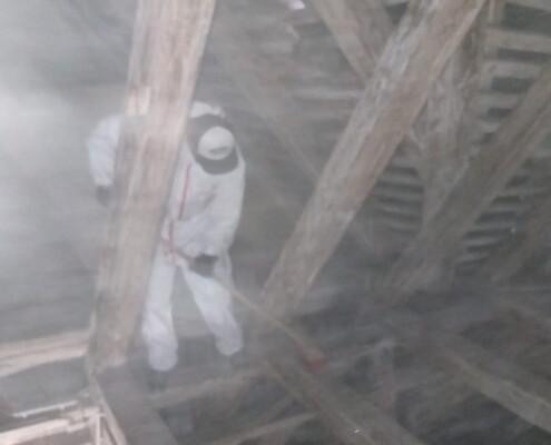 Dachstuhl Taubenkot entfernen reinigen Allessauber Spital Wien