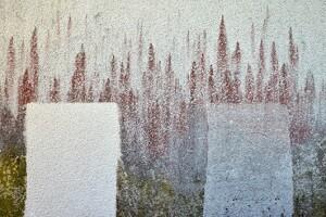 Fassadenreinigung HF1 plus Allessauber Kim Reinigungsmittel kärchern