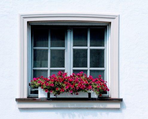 Fensterreinigung Einfamilienhaus Haubetreuung Hausbetreuuer Hauswart Gebäudereinigung Grünflächenbetreuung Privatobjekt Allessauber Kim