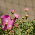 Grünflächenbetreuung Gartenservice Rasen mähen Rasenpflege Vertikutieren Rasen lüften Sähen Hecken schneiden Hausserive