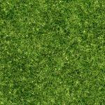Grünflächenbetreuung Gartenservice Rasen mähen Rasenpflege Vertikutieren Rasen lüften Sähen Rasenneuanpflanzung