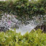 Grünflächenbetreuung Gartenservice Rasen mähen Rasenpflege Vertikutieren Rasen lüften Sähen Giessen