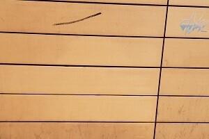 Graffitientfernung 1150 Wien Hauptbücherei Allessauber Kim Reinigungsfirma