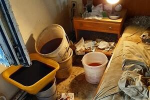 Messie Wohnung Reinigung Desinfektion Allessauber Kim Spezialgebäudereinigung
