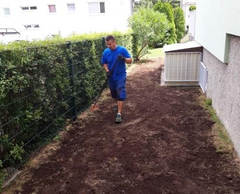 Rasen vertikutieren Wien Allessauber Kim