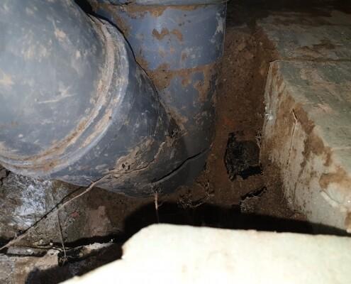 Rohrbruch PVC Abzweiger Setzungsschaden Allessauber Kanalreinigung