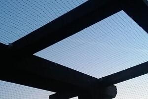 Taubenabwehr Netz Terrasse Balkon Allessauber Kim Schädlingsbekämpfung