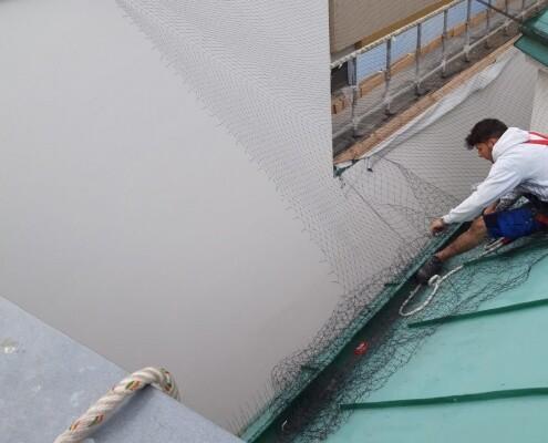 Taubenabwehr Spezialist Taubennetz Installation in der Arbeit 1040 Wien Allessauber Kim