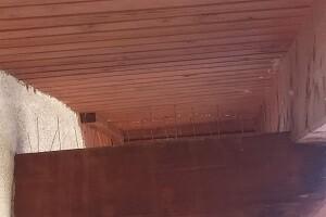 Taubenabwehr Spikes in Strasshof an der Nordbahn Allessauber Kim Schädlingsbekämpfung